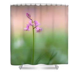 Morning Mood Shower Curtain by Johan Hakansson