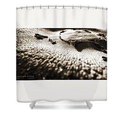 Morning Mushroom Top Shower Curtain