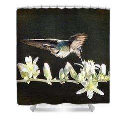 Morning Nectar Flyby  Shower Curtain