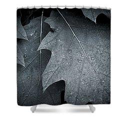 Morning Oak Shower Curtain