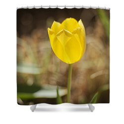 Morning Optimism Shower Curtain by Morris  McClung