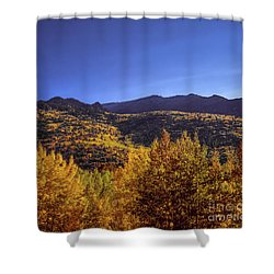 Morning Pancakes Shower Curtain