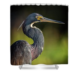 Morning Portrait Shower Curtain