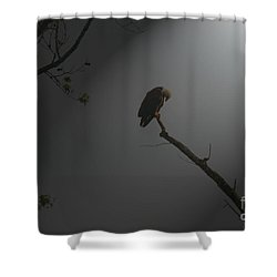 Shower Curtain featuring the photograph Morning Prayer by Geraldine DeBoer