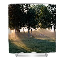 Morning Rays Shower Curtain