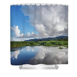 Shower Curtain featuring the photograph Morning Reflections On A Marsh Pond by Greg Nyquist
