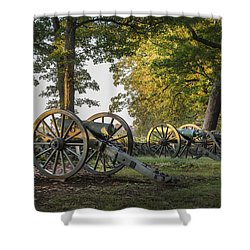 Morning Sentinel Shower Curtain