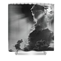 Morning Shadow Shower Curtain