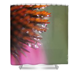 Morning Shower Shower Curtain by Yumi Johnson
