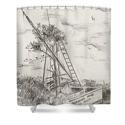 Shower Curtain featuring the drawing Morning Star by Stan Tenney