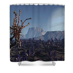 Morning Stroll Shower Curtain by Richard Rizzo