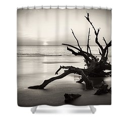 Morning Sun On Driftwood Beach In Black And White Shower Curtain