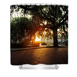 Morning Sun On The Bricks Of Savannah Shower Curtain