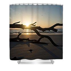 Morning Sun Over Driftwood Shower Curtain
