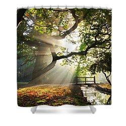 Morning Sunrise In Hampden Park Shower Curtain