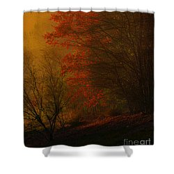 Morning Sunrise With Fog Touching The Tree Tops In Georgia. Shower Curtain