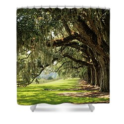 Morning Under The Mossy Oaks Shower Curtain