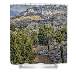 Morning Walk Shower Curtain by Alan Toepfer