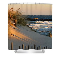 Morning's Light Shower Curtain by Dianne Cowen