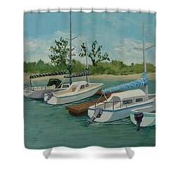Shower Curtain featuring the painting Morro Bay State Park Ca by Katherine Young-Beck