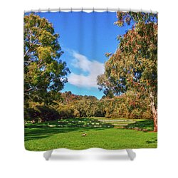 Mortimer Galah Live At The Grass Ampitheatre Shower Curtain by Mark Blauhoefer