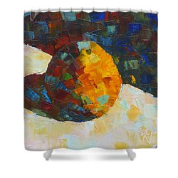 Mosaic Citrus Shower Curtain
