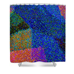 Shower Curtain featuring the photograph Mosaic Detail by Craig Wood