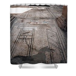 Mosaic In Pompeii Shower Curtain by Marna Edwards Flavell
