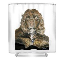 Mose - Cocker Spaniel Shower Curtain