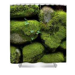 Shower Curtain featuring the photograph Moss And Ivy by Mike Eingle