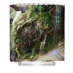 Shower Curtain featuring the photograph Moss And Waterfalls by Sheila Brown