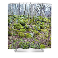 Moss - Gatlinburg Shower Curtain