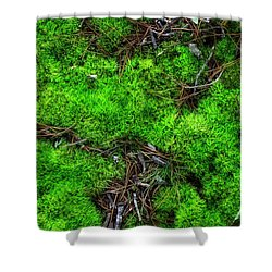 Shower Curtain featuring the photograph Moss On The Hillside by Mike Eingle