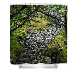 Moss Stream Shower Curtain