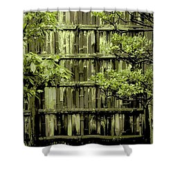 Mossy Bamboo Fence - Digital Art Shower Curtain by Carol Groenen