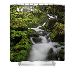 Mossy Fall #3 Shower Curtain