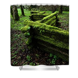 Mossy Fence 5 Shower Curtain by Bob Christopher