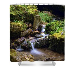 Mossy Glenn Spring 2 Shower Curtain