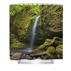 Mossy Grotto Falls In Summer Shower Curtain by David Gn
