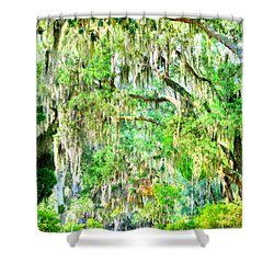 Shower Curtain featuring the photograph Mossy Oak Pathway H D R by Lisa Wooten