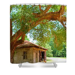 Mossy Tree In Natchez Shower Curtain