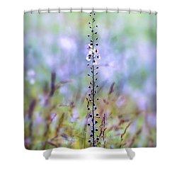 Shower Curtain featuring the photograph Moth Mullein - Wildflower Art by Kerri Farley