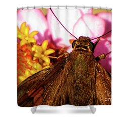 Moth On Pink And Yellow Flowers Shower Curtain