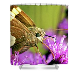 Shower Curtain featuring the photograph Moth On Purple Flower by Meta Gatschenberger