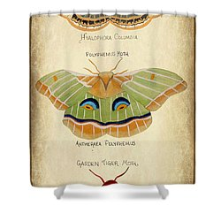 Moth Study Shower Curtain