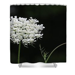 Mother And Child Shower Curtain by Jeanette Oberholtzer