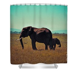 Shower Curtain featuring the photograph Mother And Child by Karen Lewis