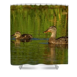 Mother And Child Mallards Shower Curtain by Jean Noren