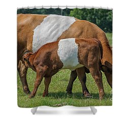 Shower Curtain featuring the photograph Mother And Child by Patricia Hofmeester