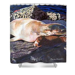 Mother And Child Sea Lion Shower Curtain